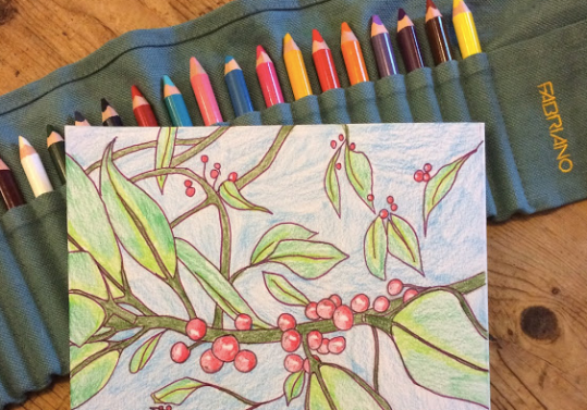 Botanical Walk and Draw
