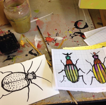 Inky insect drawings.